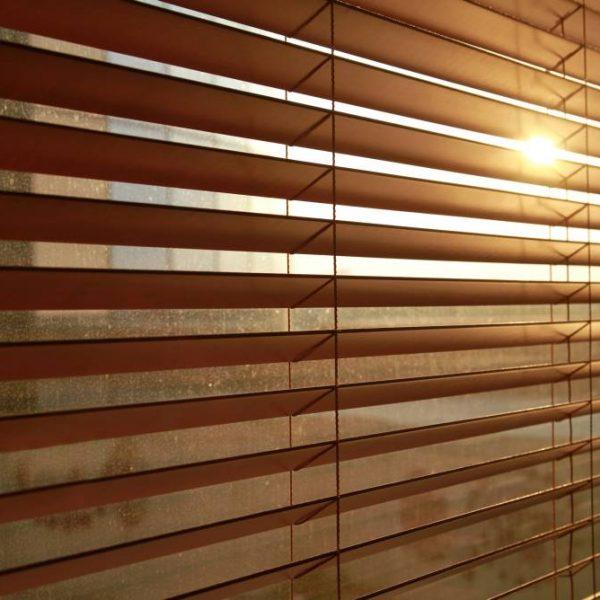 Sunlight behind vertical blinds